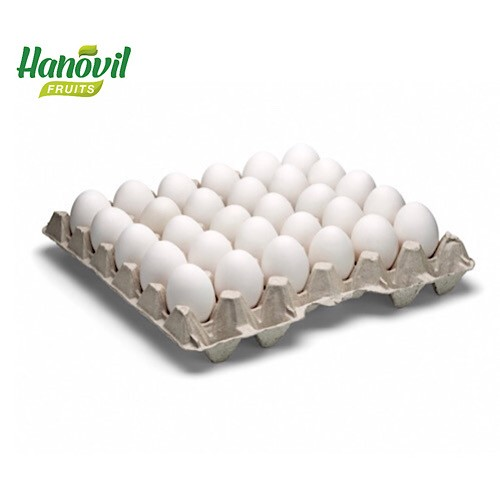 Image for product: EGG -PLATE