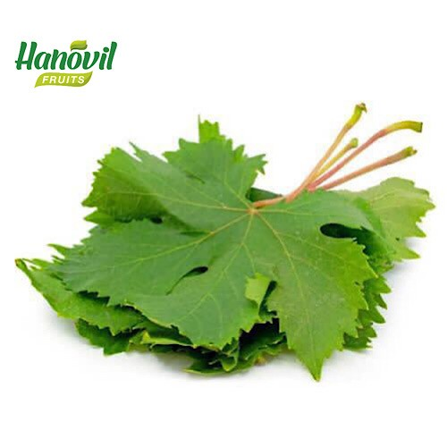Image for product: GRAPE LEAVES-PACKET 250g