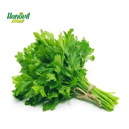 Image for product: PARSLEY -BENCH