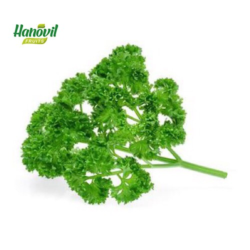 Image for product: PARSLEY KERLY-BENCH 100g