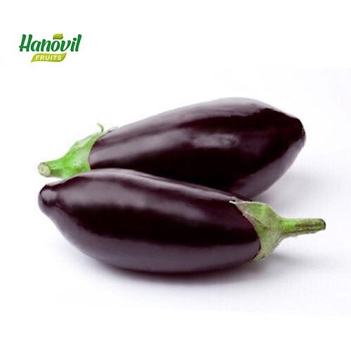 Image for product: EGGPLANT  LARGE