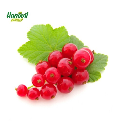 Image for product: RED CURRANTS-PACKET 125g