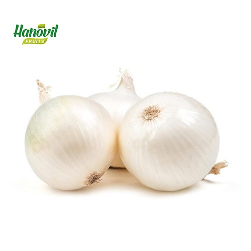 Image for product: ONION WHITE