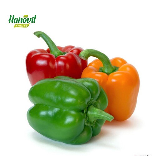 Image for product: CAPSICUM MEX COLOR-BOX