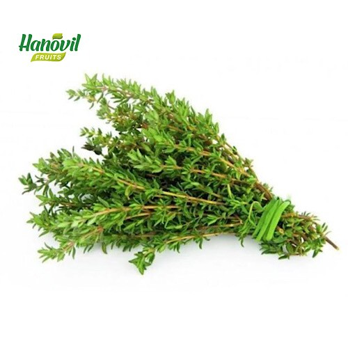 Image for product: THYME         -BENCH 100g