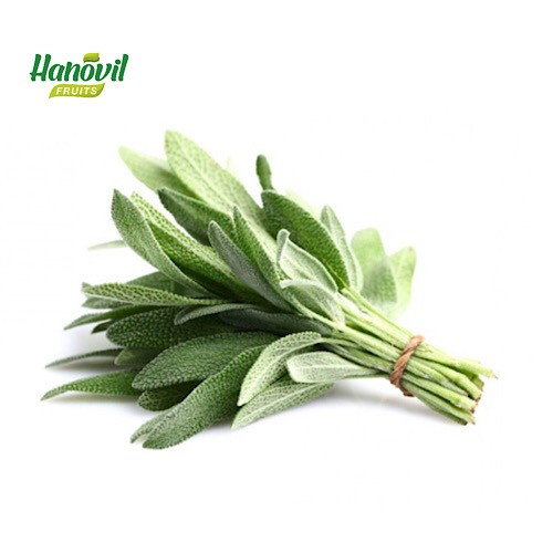 Image for product: SAGE            -BENCH 100g