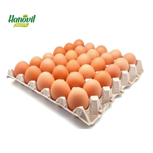 Image for product: BROWN EGG PLATE