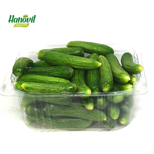 Image for product: CUCUMBER BABY-PACKET 250g