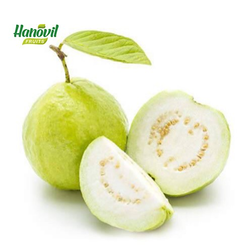 Image for product: GUAVA GREEN-1Kg