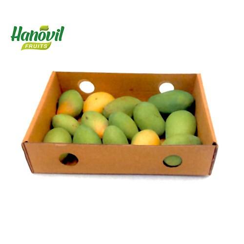 Image for product: MANGO Baby-Box