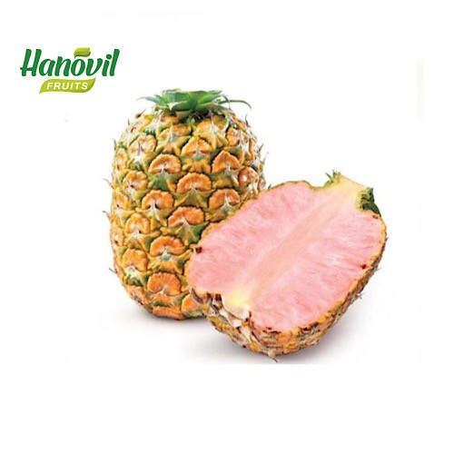 Image for product: PINEAPPLE Bink