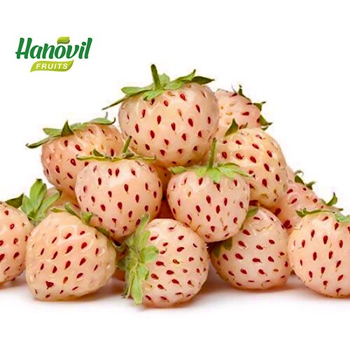 Image for product: Pineberry