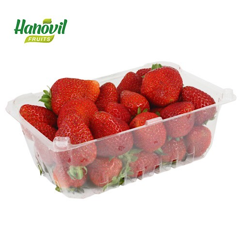 Image for product: STRAWBERRY-PACKET SOTH AFRICA