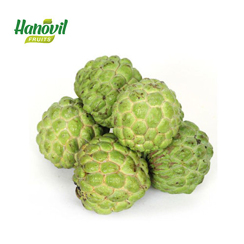 Image for product: CUSTARD APPLE-1Kg