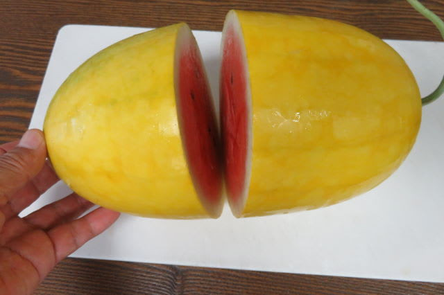 Image for product: golden midget watermelon