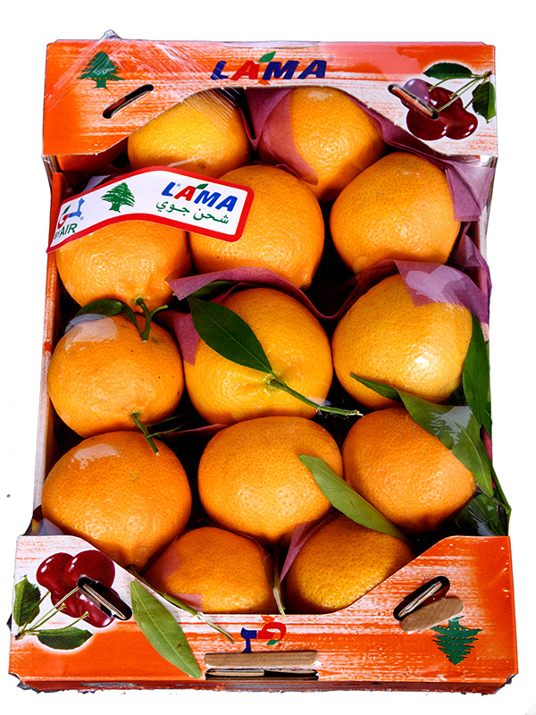 Image for product: lebanese mandarine carton