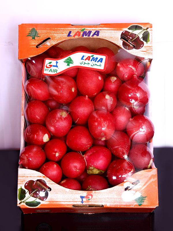 Image for product: lebanese radish carton