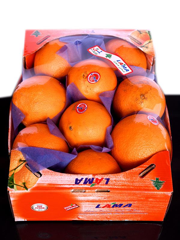 Image for product: lebanese navel orange carton