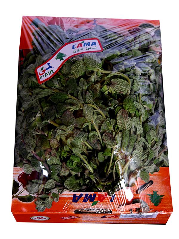 Image for product: lama thyme zuba akdar