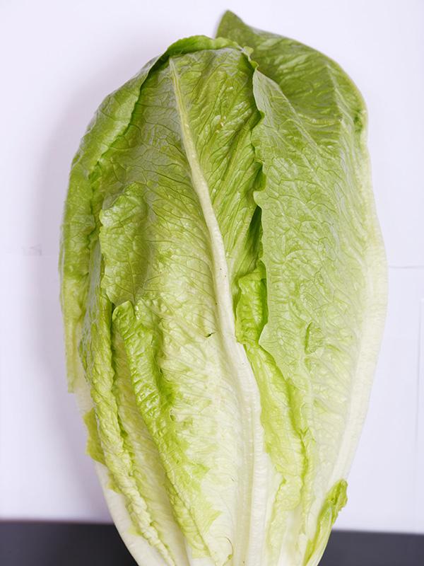 Image for product: lebanese lettuce