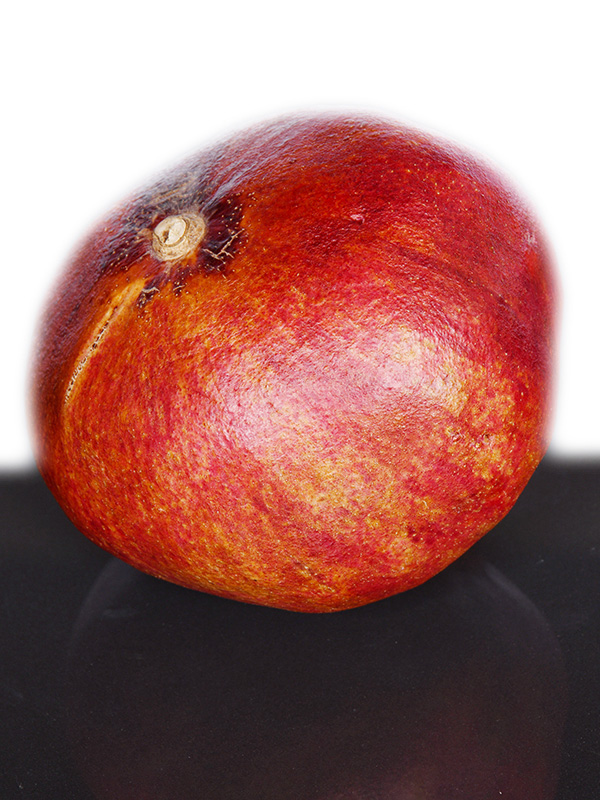 Image for product: indian pomegranate