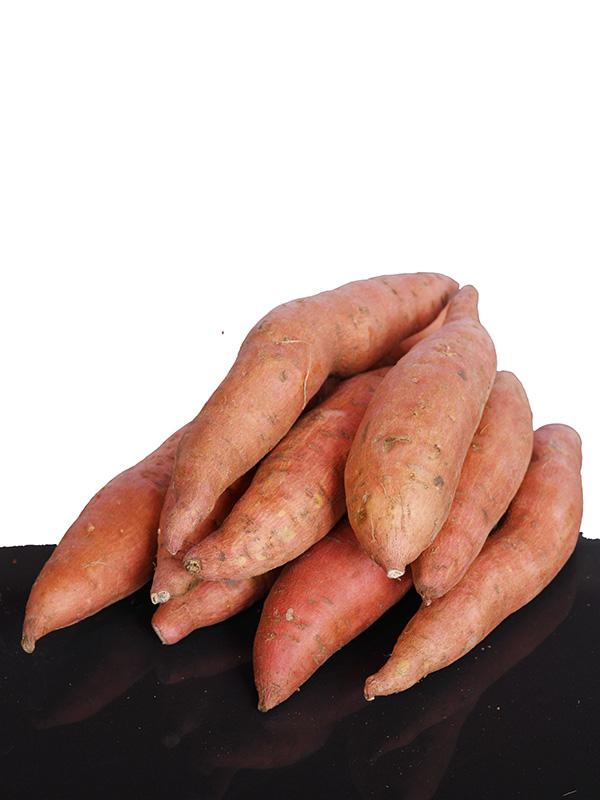 Image for product: lebanese sweet potato