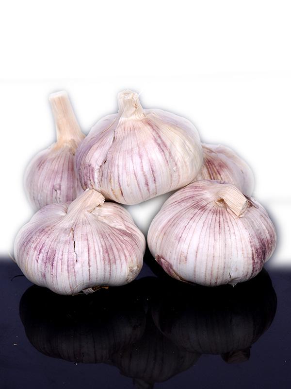 Image for product: lebanese garlic