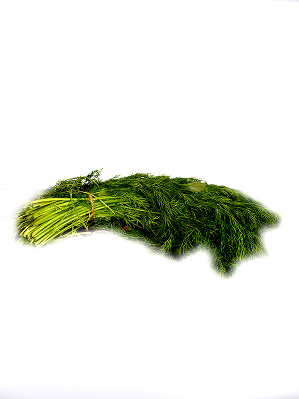 Image for product: kuwaiti dill